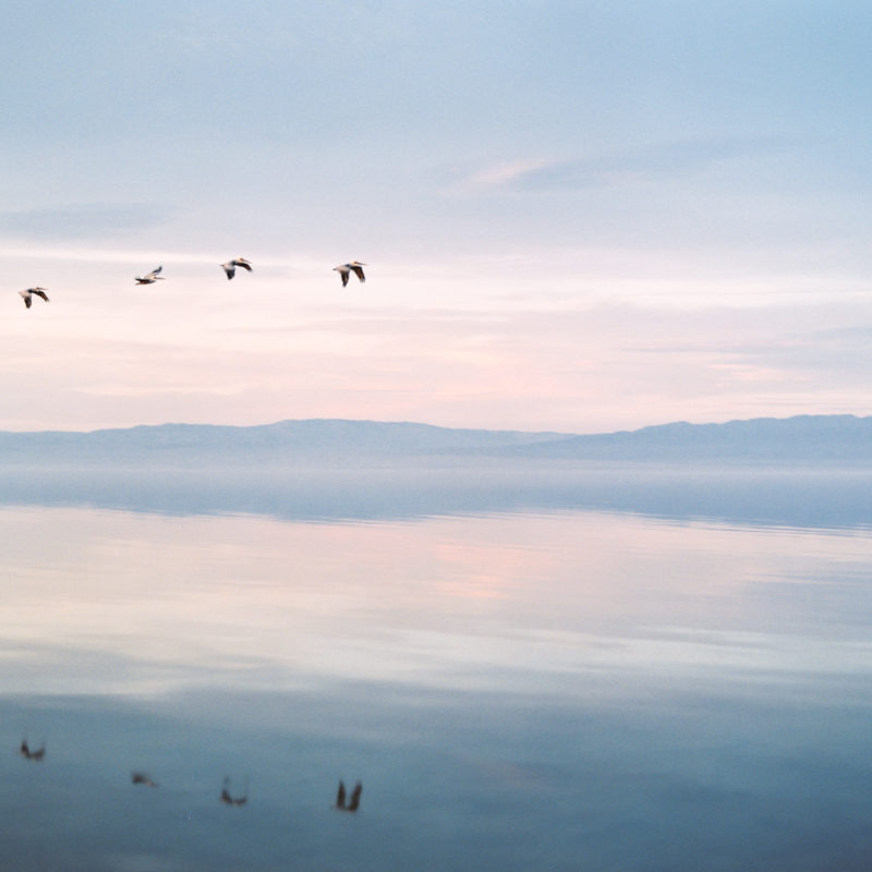 salton sea California, contax 645, film photographer