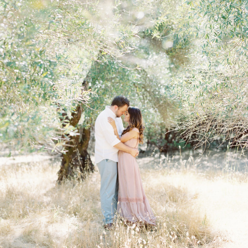sonoma county engagement session, sonoma county wedding photographer, napa wedding photographer, california film photographer, sonoma county film photographer